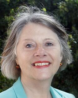 Suzie Morley Leader of Mid Suffolk District Council Suffolk Public Sector Leaders Group SPSLG